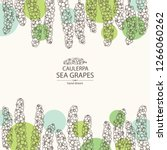 background with caulerpa  sea... | Shutterstock .eps vector #1266060262