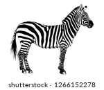 African Striped Zebra Hand...