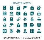 private icon set. 30 filled... | Shutterstock .eps vector #1266219295