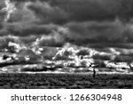 sonora desert in infrared... | Shutterstock . vector #1266304948