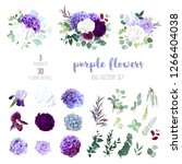 dark purple garden rose  plum... | Shutterstock .eps vector #1266404038