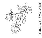 beautiful blooming branch...   Shutterstock .eps vector #1266554428