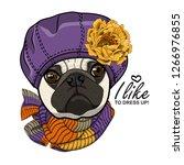 vector dog with violet hat ... | Shutterstock .eps vector #1266976855