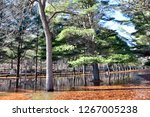 sub freezing lake with colorful ... | Shutterstock . vector #1267005238