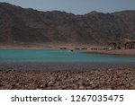 day trip in dahab  egypt | Shutterstock . vector #1267035475