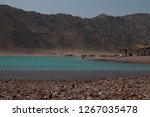 day trip in dahab  egypt | Shutterstock . vector #1267035478