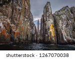 The World Famous Totem Pole An...