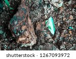 rough textured rocks | Shutterstock . vector #1267093972
