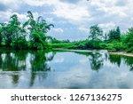 the river scenery in summertime  | Shutterstock . vector #1267136275