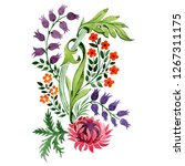 red and purple floral botanical ...   Shutterstock . vector #1267311175