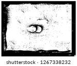 grunge paint.grunge ink frame...   Shutterstock . vector #1267338232