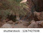 day trip in dahab  egypt | Shutterstock . vector #1267427038