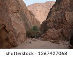 day trip in dahab  egypt | Shutterstock . vector #1267427068