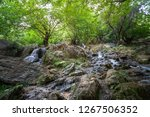 landscape and nature around... | Shutterstock . vector #1267506352