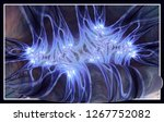 an abstract computer generated... | Shutterstock . vector #1267752082
