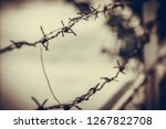 Barbed Wire On A Blur Background