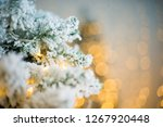 close up of a christmas tree... | Shutterstock . vector #1267920448