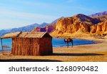 beautiful sandy beach in sinai... | Shutterstock . vector #1268090482