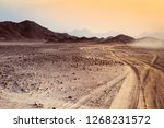 safari and travel to africa  ... | Shutterstock . vector #1268231572