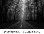A Lonely Road In A Haunting...