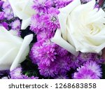 beautiful flowers as background  | Shutterstock . vector #1268683858