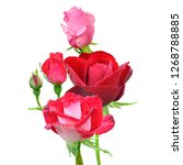 rose low poly. beautiful... | Shutterstock . vector #1268788885