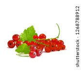 red currant low poly. fresh ... | Shutterstock . vector #1268788912