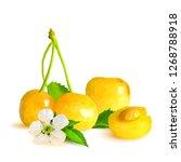 yellow cherries low poly. fresh ... | Shutterstock . vector #1268788918