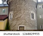 Small photo of A marvellous view of an ancient building covered by ivy branches which looks like an inspirited face with eyes and a mouth