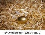 Golden Egg Laid By A Hen. Macr...
