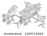 coloring pages. colouring...   Shutterstock .eps vector #1269113365