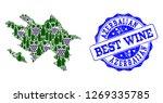 vector collage of grape wine... | Shutterstock .eps vector #1269335785