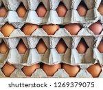 fresh egg close up | Shutterstock . vector #1269379075