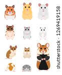 collection of hamster breeds | Shutterstock .eps vector #1269419158