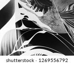 abstract black and white waves  ... | Shutterstock . vector #1269556792
