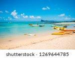 bain boeuf mauriutius.... | Shutterstock . vector #1269644785