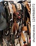 reindeer harness. reindeer... | Shutterstock . vector #1269868372