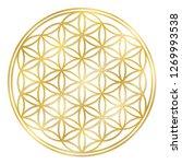 golden flower of life  used for ... | Shutterstock .eps vector #1269993538