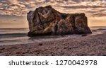 a scene at el matador state...   Shutterstock . vector #1270042978