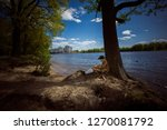 st petersburg  russia   may 23  ... | Shutterstock . vector #1270081792