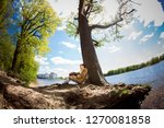 st petersburg  russia   may 23  ... | Shutterstock . vector #1270081858
