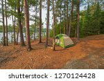 quiet campsite on bell lake  in ...