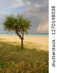 rainbow  gold coast | Shutterstock . vector #1270148038