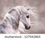 Stock photo a digital render of the profile of a dappled grey horse close up head shot monochromatic warm 127042865