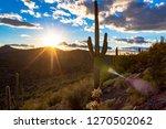 sunset in the sonoran desert...   Shutterstock . vector #1270502062