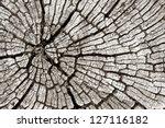 wood texture 01 | Shutterstock . vector #127116182