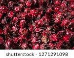 pattern of fresh roselle in...   Shutterstock . vector #1271291098