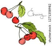 vector cherry fruit. leaf plant ... | Shutterstock .eps vector #1271358982