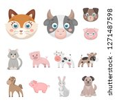 vector design of animal and... | Shutterstock .eps vector #1271487598