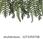 vector card with hand drawn... | Shutterstock .eps vector #1271554738